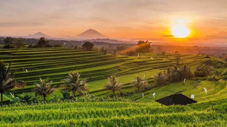 Boží Bali – transformační pobyt